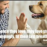 Dog inspiration: Love steadily