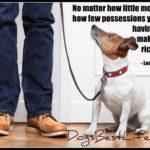 Dog inspiration: Having a dog makes you rich