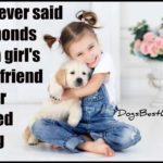 Dog inspiration: Whoever said diamonds are a girl's best friend never owned a dog