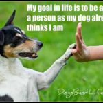 Dog inspiration: My goal in life is to be as good a person as my dog already thinks I am